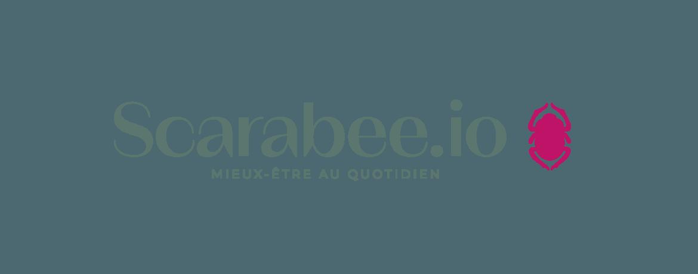 Logo script scarabee.io